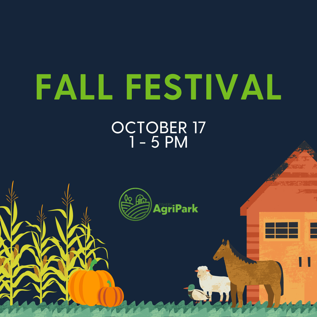 fall festival october 17 1 - 5 pm